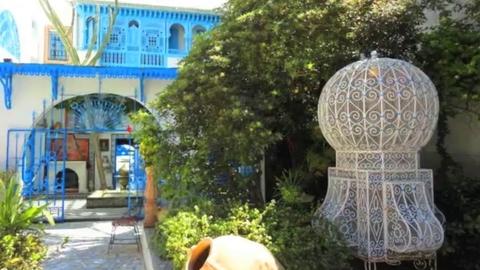 Beauty of Tunisia جمال تونس الخضراء